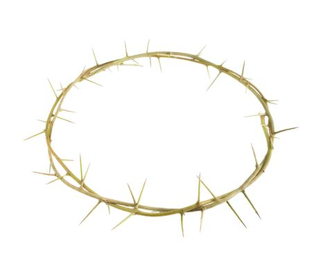 thorn: thorn crown.conception of the christianity