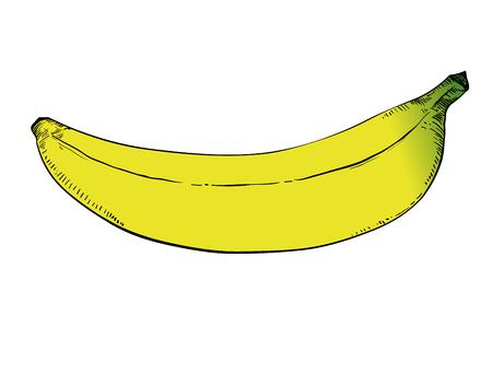 Banana drawing on white background. Çizim