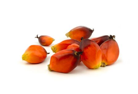 oil palm fruit in orange color on white background