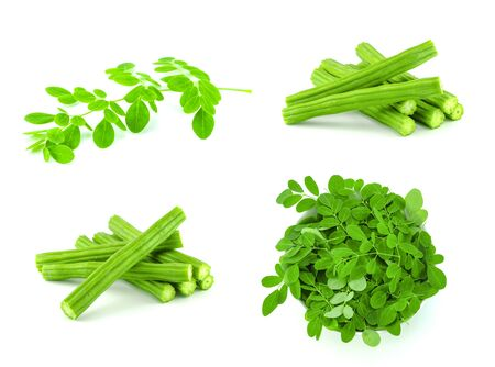 set of moringa leaves and moringa fruit on white background in herb concept Stock Photo - 128039586
