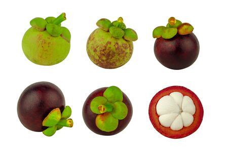 set of mangosteen fruit raw and ripe isolated