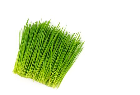 top view of pile wheat grass on white background
