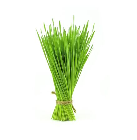 bunch of wheat grass on white background