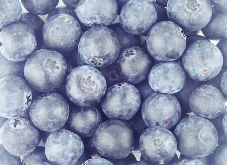 close up fresh blueberry fruit background Stock Photo
