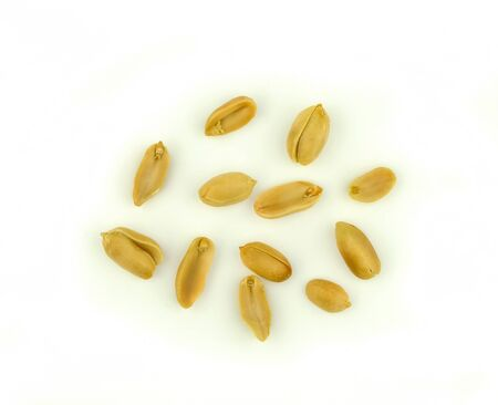 group of peanut grain on white background