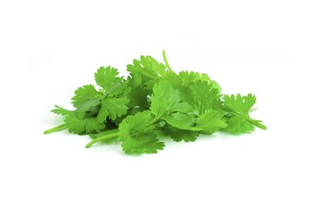pile of coriander leaf on white background Stock Photo