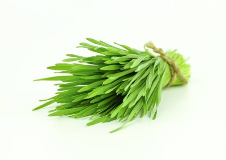 wheat grass on white background