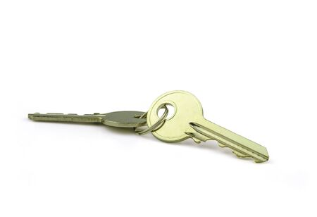 steel key with ring in business concept place on white background
