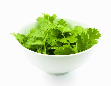 coriander leaves in bowl on white background
