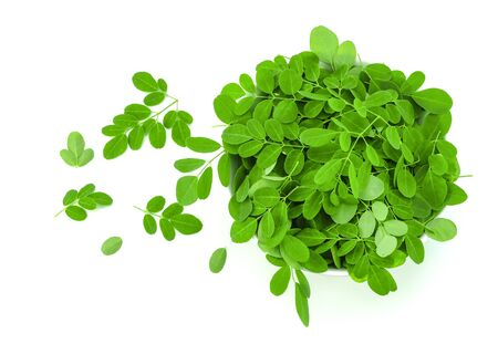 moringa leaves to making heathy herb on white background Stock Photo