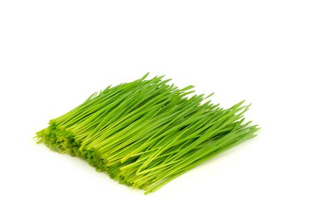 pile of cutting wheat grass for making juice on white background