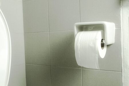 the bathroom interior with toilet paper