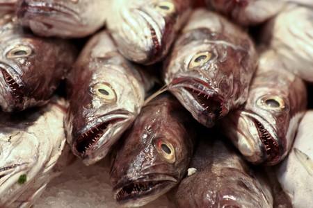 Fish Heads at the Market Stock Photo - 6952012