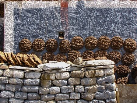 Cow and yak dung drying on the walls of a Tibetan house. This will be used as fuel in winter. Sakya, Tibet, China