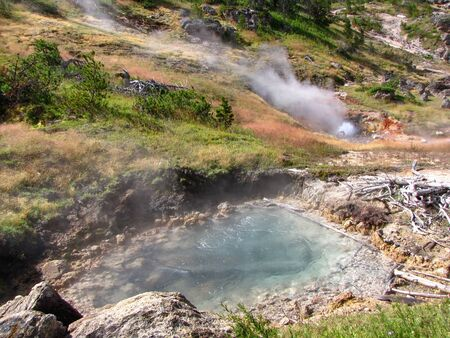 Hot springs and fumaroles