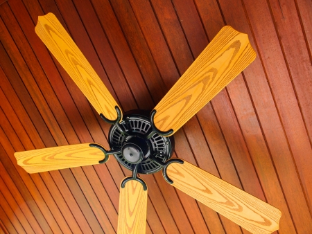 wooden beams: Ceiling fan