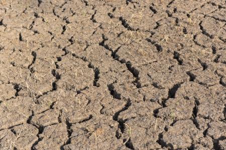 waterless: waterless field Stock Photo