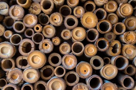 Bamboo wall pattern