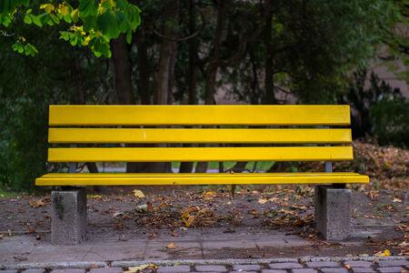 Park bench in autumn closeup  photo