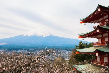 Mt  Fuji viewed from behind Chureito Pagoda Stock Photo - 26419519
