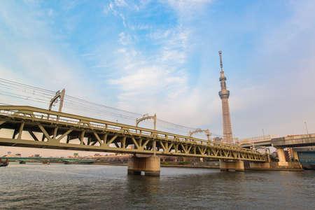 oshiage: Tokyo city and Tokyo skytree at dusk