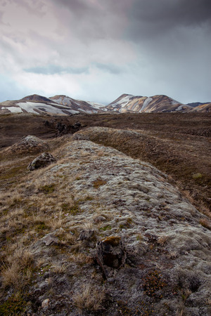 Dramatic mossy area in Iceland with mountains Stock Photo