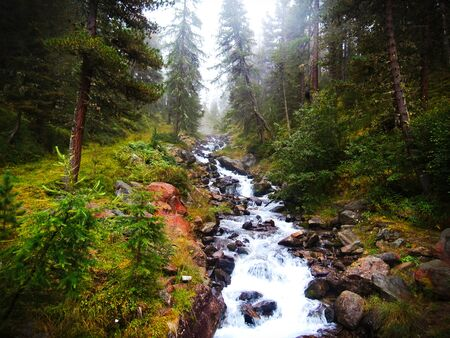 atmosphere: Mountain stream in mystical atmosphere