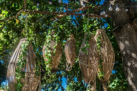 Some cage-like wood baskets are stringed to a tall tree and vines growns on them, the tree has a black wire with a lot of big white lamps wrapping it, between the leaves theres the sky Imagens