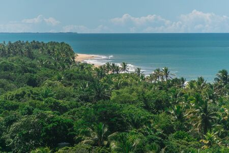 Scenic and tropical view from the top of a mountain of the empty Natives beach, with bright green native vegetation, palm trees and the vast blue ocean in the skyline at Porto Seguro, Trancoso, Bahia