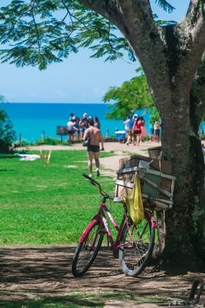 Closeup in a violet bicycle with cardboxes in the rump leaning into a wide tree and the blue ocean line. Travel, backpacker, moviment and moving concept. Stockfoto