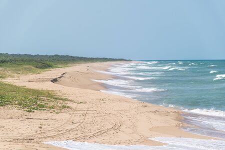 Étroite étendue de sable entre l'océan atlantique brésilien et la végétation qui y pousse, des traces de pneus et des empreintes de pas couvrent la plage