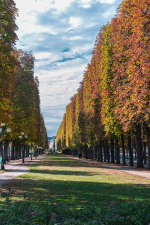 In depth and parallel perspective of the Jardin dErevan, and the Promenade du cours de la reine, a beautiful natural setting with aligned gradient trees and a pathway with classical round lamps