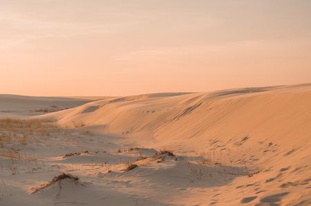 Golden Hour of sand dunes.