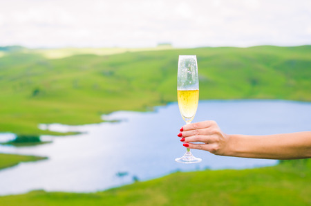 Young woman holding glass of sparkling (champagne) Banco de Imagens