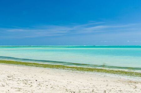 Maceió, Alagoas, Brazil, November 16 -2019: Gorgeous view of Maceio beach with its Caribbean blue waters
