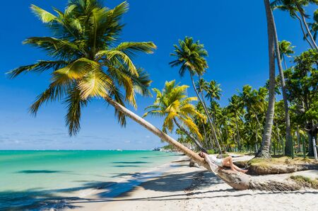 Young tourist young woman lying in coconut tree in paradise beach of Brazil, Carneiros Beach, Pernanbuco, Brazil.