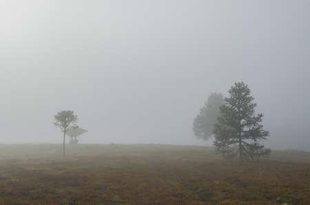 Beautiful rural farm landscape in cloudy day