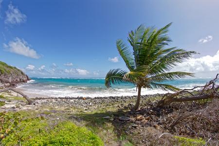 Macre Cape - Le Marin - Martinique - FWI Stock Photo
