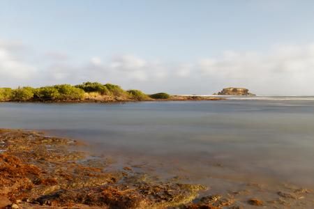 Anse à Prunes - Near Salines beach - Sainte Anne - Martinique