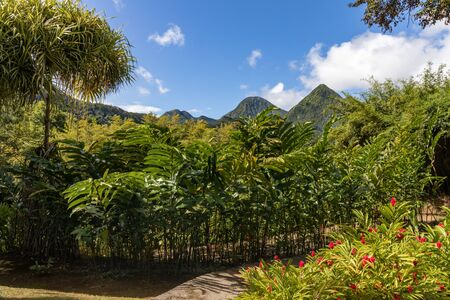 Fort de France, Martinique, FWI - View to the Carbet Pitons from Balata gardens Stock Photo