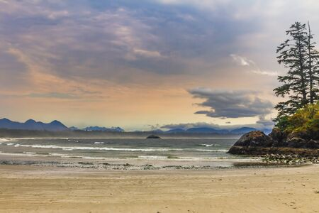 Tofino beach - Vancouver Island, British Columbia, Canada Banque d'images