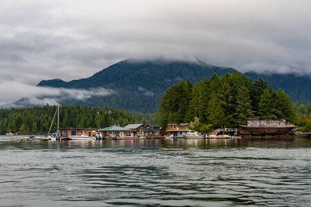 Strawberry Island, Tofino Harbour, Vancouver Island, British Columbia, Canada