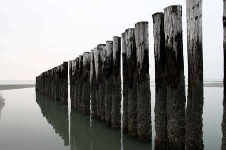 A photo of the beach with a row of poles