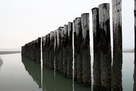 the beach with a row of poles
