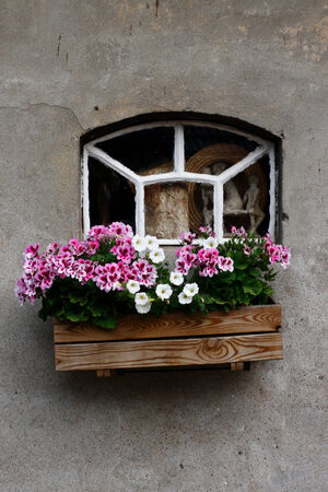 A photo of a windows with flowers in front to it. Stock Photo