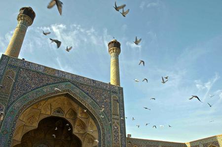 Vogels in een moskee