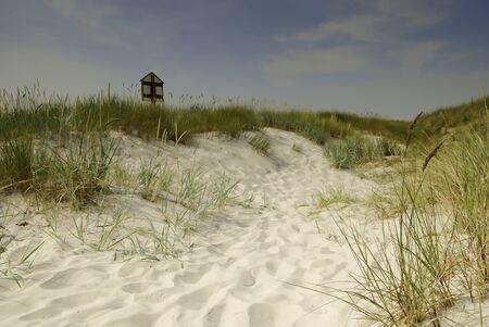 duna: dunas de arena en Suecia meridional