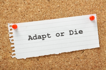 adapt: Adapt or Die typed on a piece of lined paper and pinned to a cork notice board  A concept for change management and evolving your business to avoid failure and achieve growth  Stock Photo