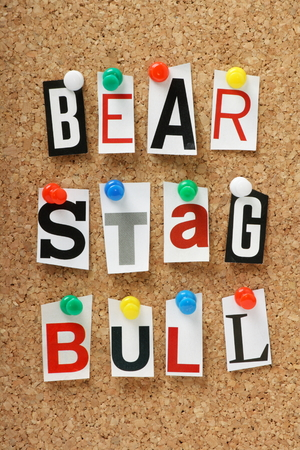 describe: The words Bear,Stag and Bull as used in Finance to describe stock market investment strategy
