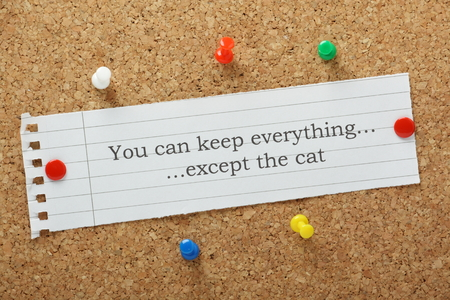 You can keep everything except the cat typed on a paper note pinned to a cork notice board  A humorous look at relationship problems and divorce settlements Stock Photo